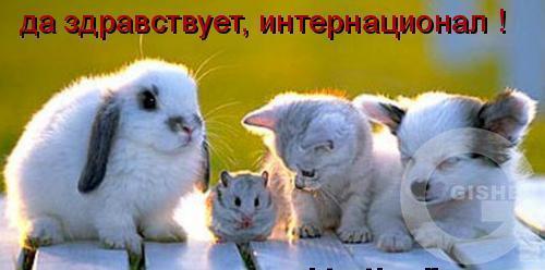 http://www.gisher.ru/gallery/svobodnaya-tematika-a94/druzhba-m2780.jpg