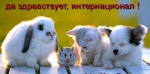 Дружба)